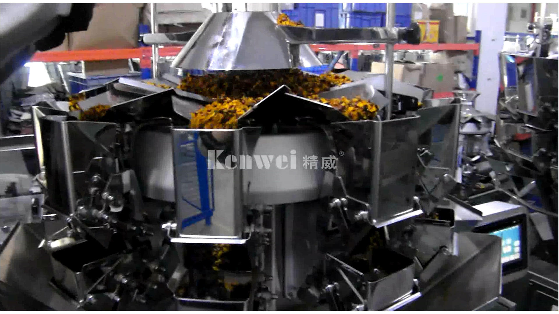 0.5L hopper volume weighing and packaging machine for weighing  packaging chrysanthemum