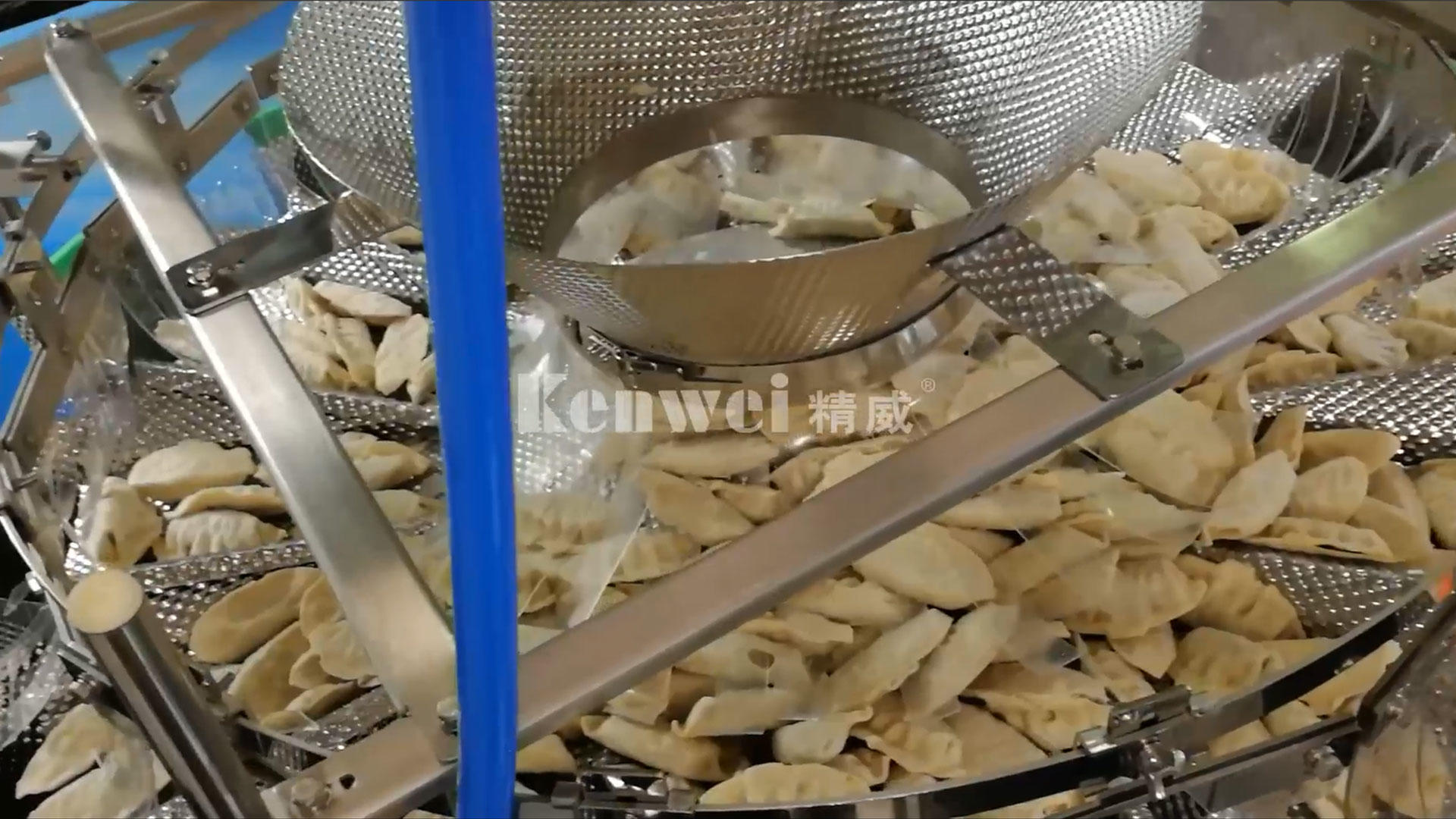 Kenwei door services provide customers with automated dumpling packaging system