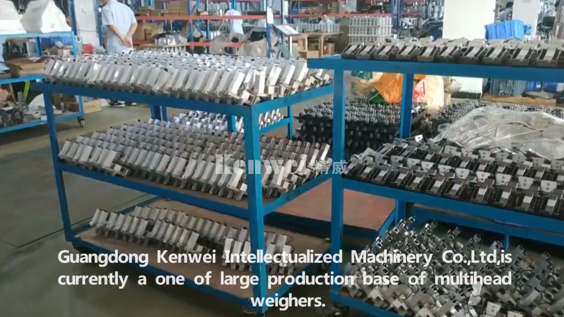 professional weigher manufacturer-Kenwei