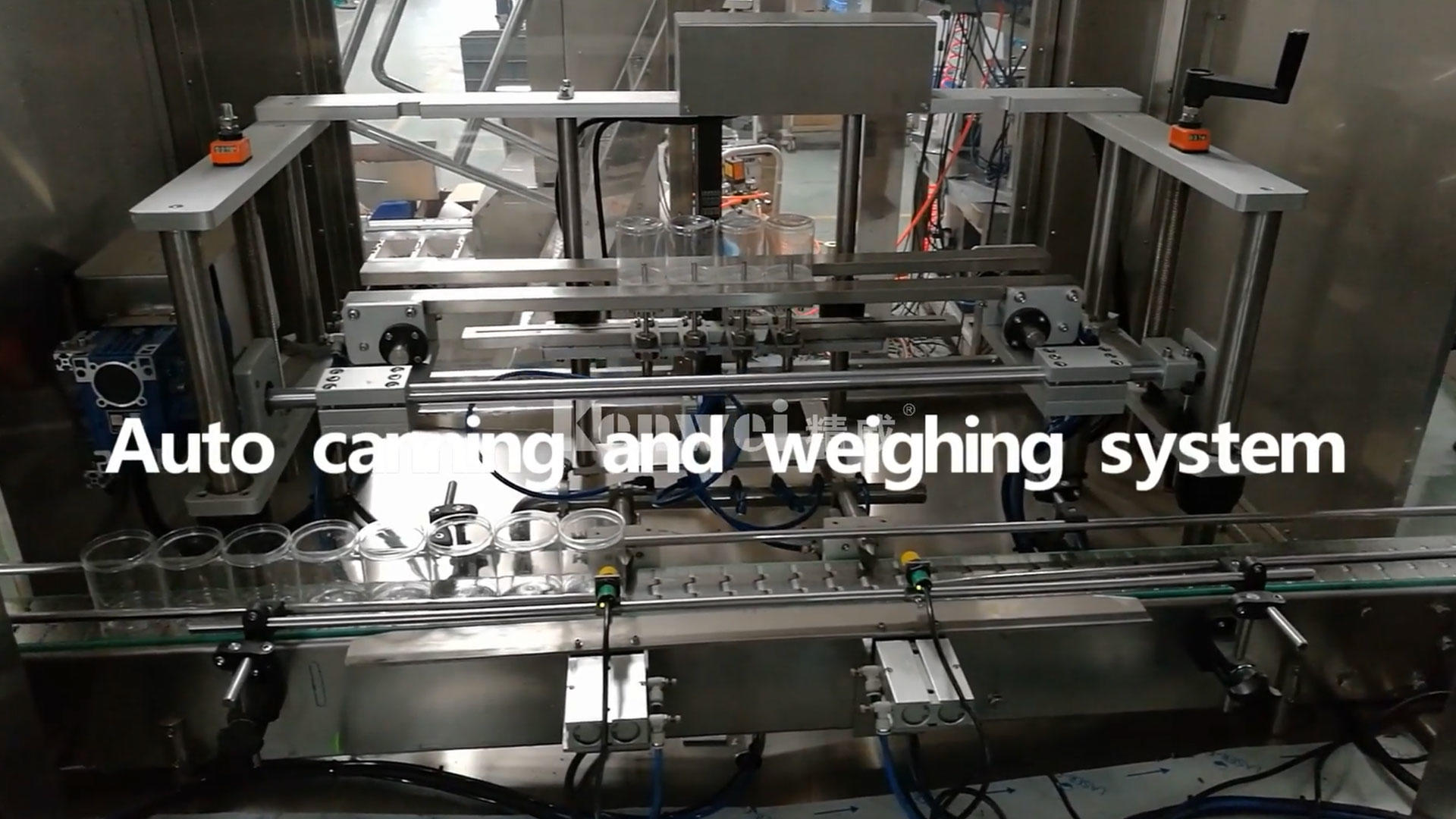 Auto canning and weighing system