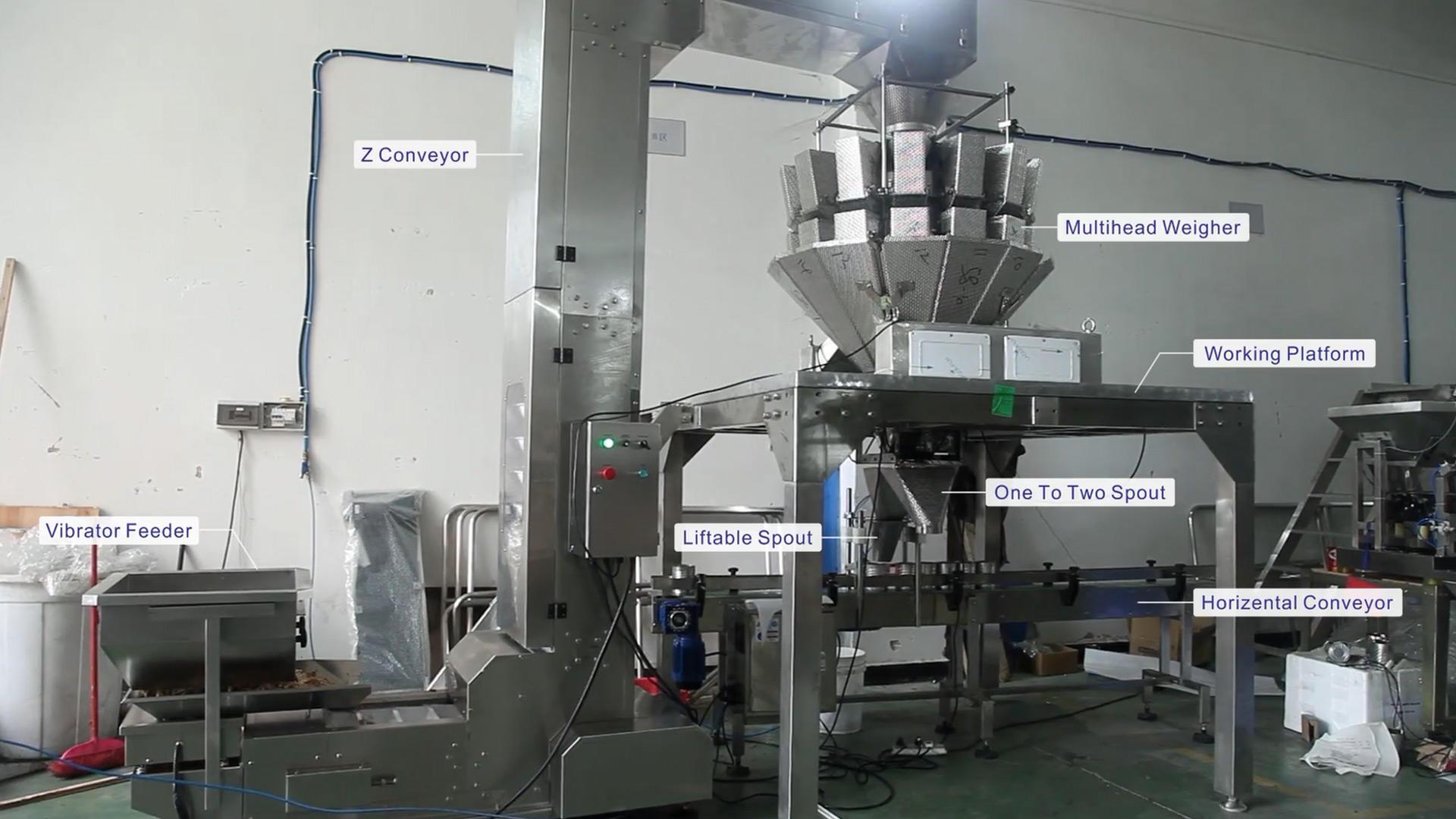 آلة تعبئة وتغليف الأسماك المجففة ذات الوزن الأوتوماتيكي JW-B24