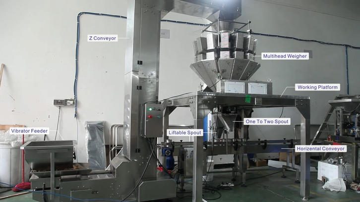 JW-B24 auto weighing dried fish packaging machine