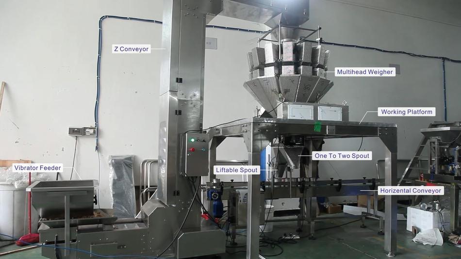 JW-B24 auto weighing dried fish packaging machine