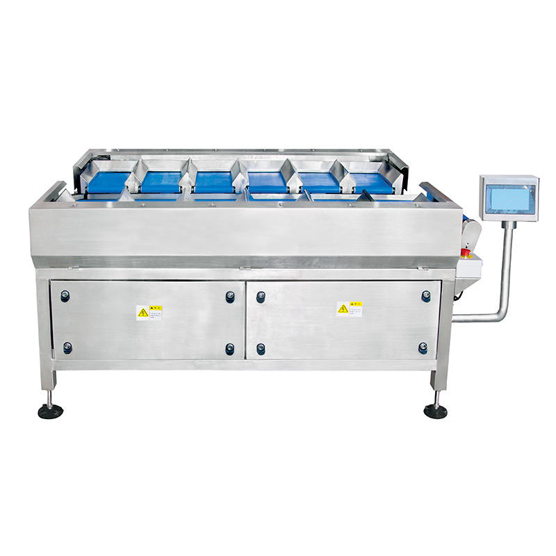 12 Head Manual Belt Multihead Weigher for Weighing Large Block