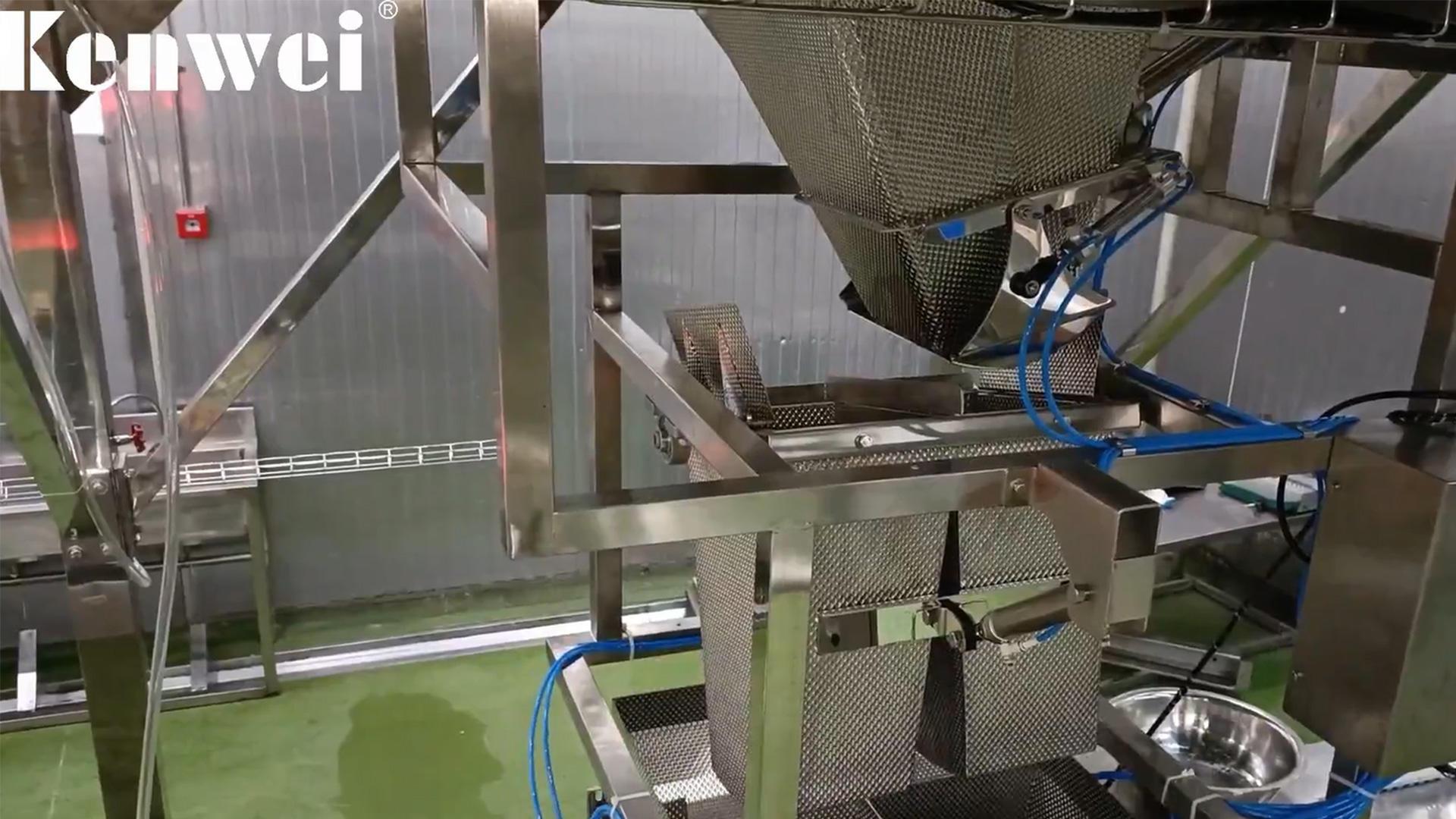 Multihead Weigher آلة التعبئة لوزن الأسماك فراي