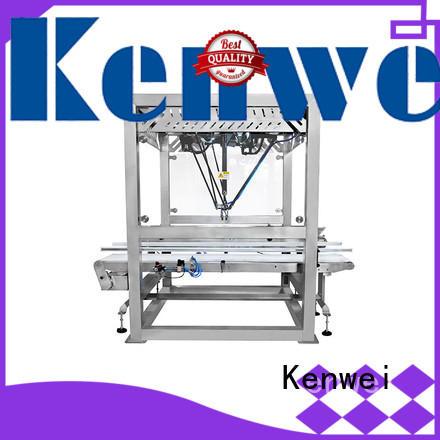 Standard d'emballage automatisé systèmes manipulateur avec forte stabilité pour intérieur