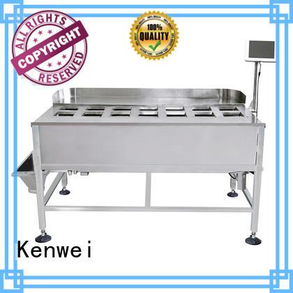Kenwei stabilité machine d'emballage chine avec haute qualité pour poisson épicé