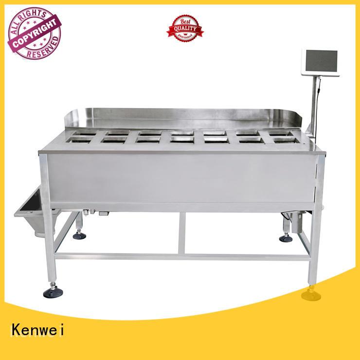 Máquina de envasado Kenwei congelado fácil de desmontar para materiales con alta viscosidad